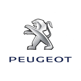 Peugeot Chevron Kits